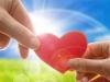 Новое сердце